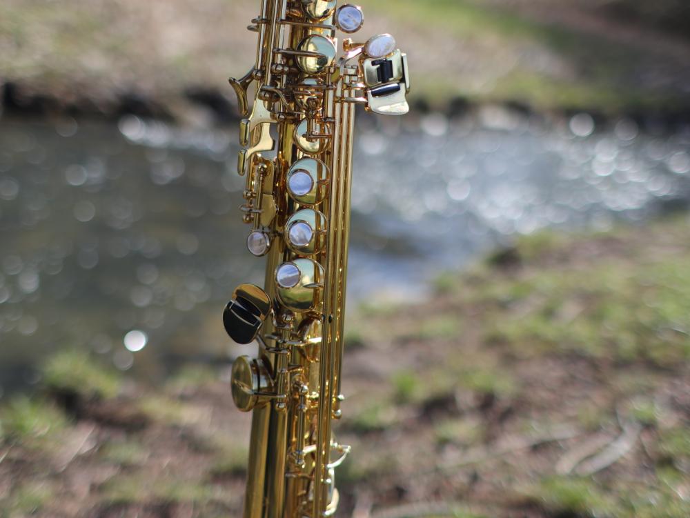 Saxophon Pfungstadt Modau